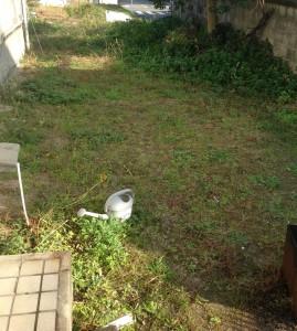草刈前のお庭